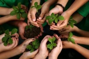 Menantang Pemerintah Untuk Pulihkan Kaltim Dari Kerusakan Lingkungan