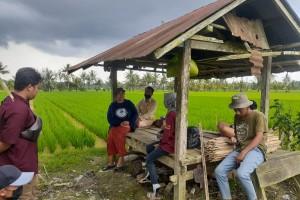 Sudah Merdekakah Petani di Indonesia?