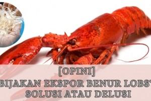 Kebijakan Ekspor Benur Lobster: Solusi atau Delusi